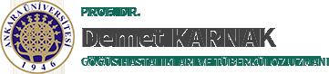 Prof. Dr. Demet Karnak